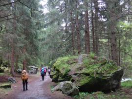Des randonneurs dans une sentier