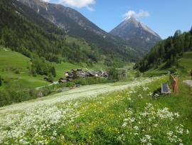 Un village dans une vallée