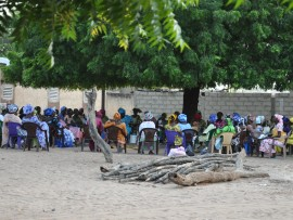 Des femmes sénégalaises assise sous un arbre