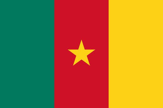 drapeau-cameroun